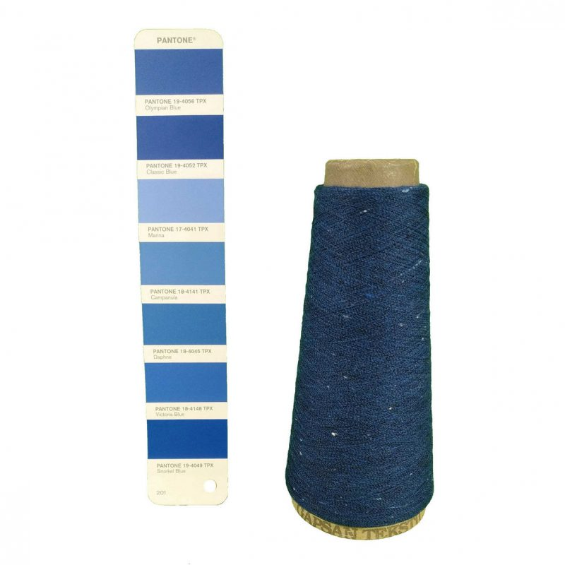 2020 pantone blue
